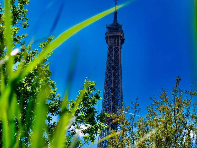 Elena Eden Autorin Eiffelturm